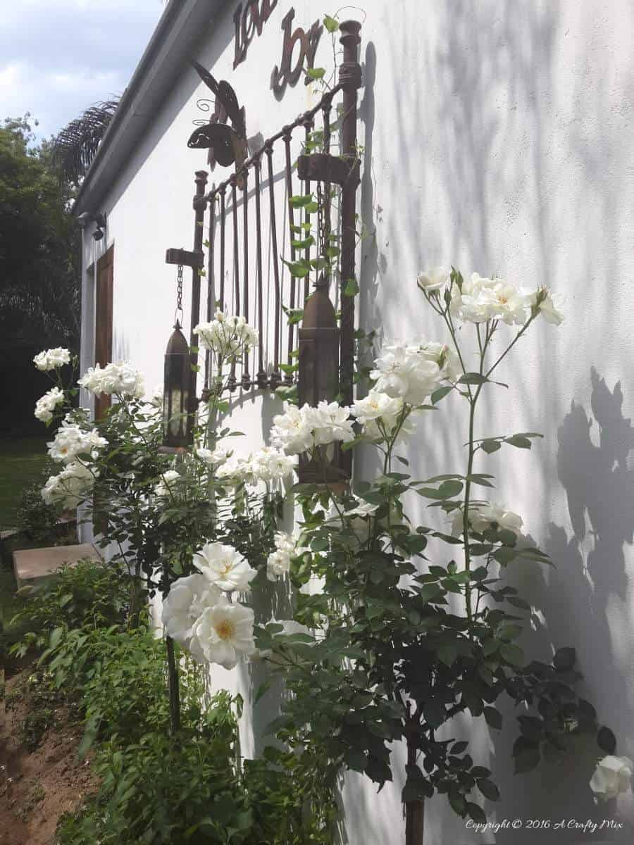 An old headboard on the wall adds some interest to our South African garden