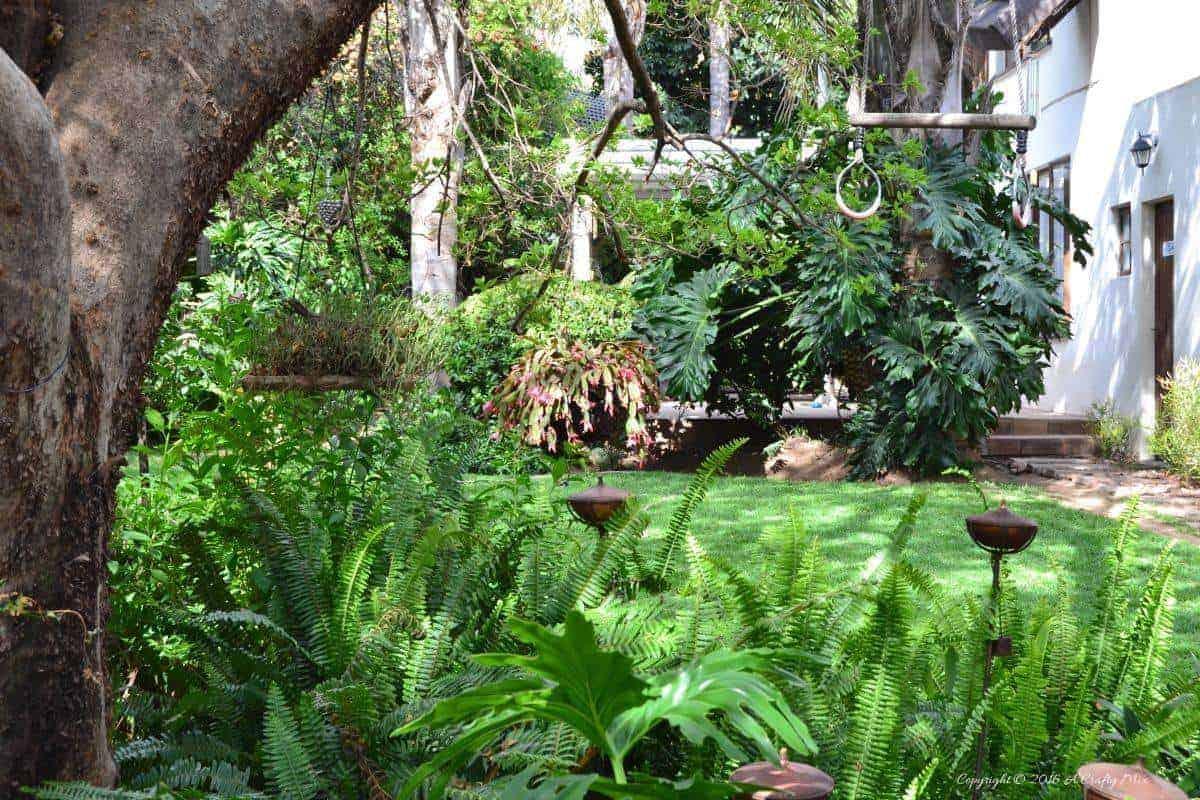 The garden towards the main house