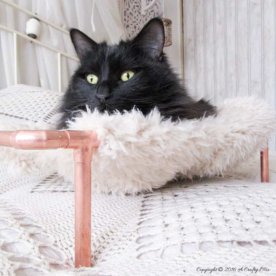 Repurpose an old sweater and copper pipes into a DIY bed for your purr babies. It's quick and easy to do, and a great way to recycle an those old sweaters! Your kitties will love it. #DIYCatBed #DIYPets #DIYHome #PetFriendly