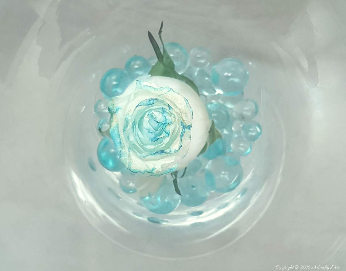 Tiffany blue ice berg roses made with blue food coloring