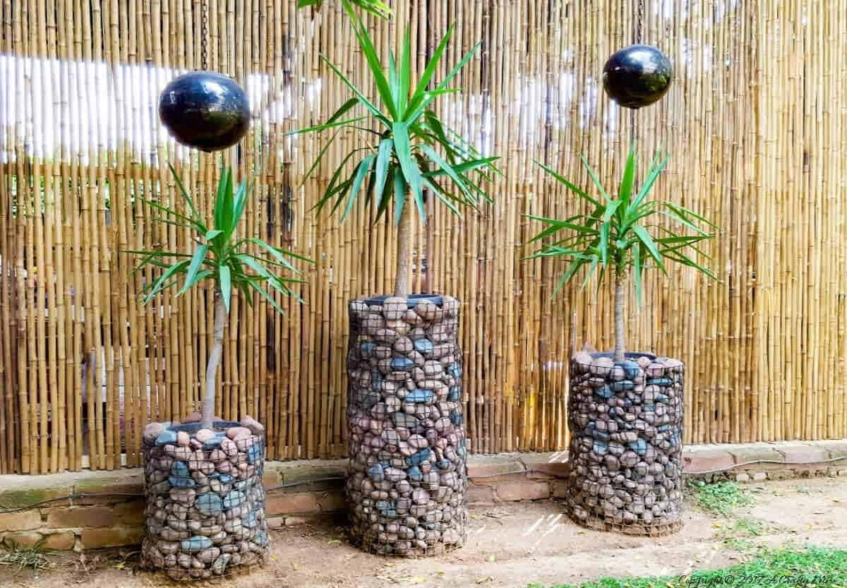 Add height and interest to your garden with this easy and affordable gabion planter tutorial. #gabionplanters #DIYTutorial #PrettyPlanters #DIYPlanters