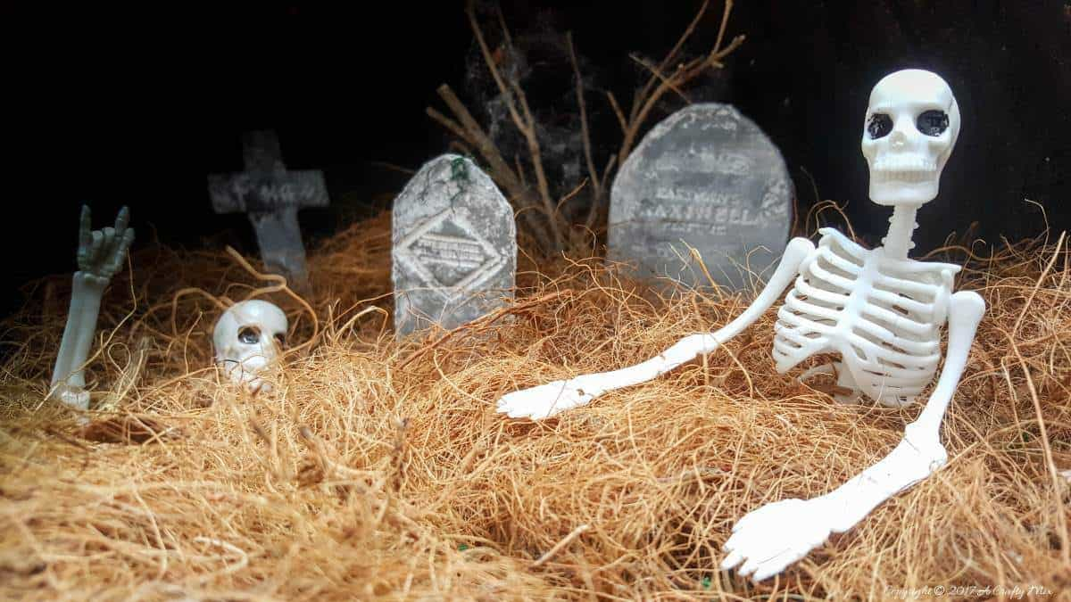A quick and easy fairy graveyard that will instantly get you into the spirit of Halloween. And best of all, the moon shines at night