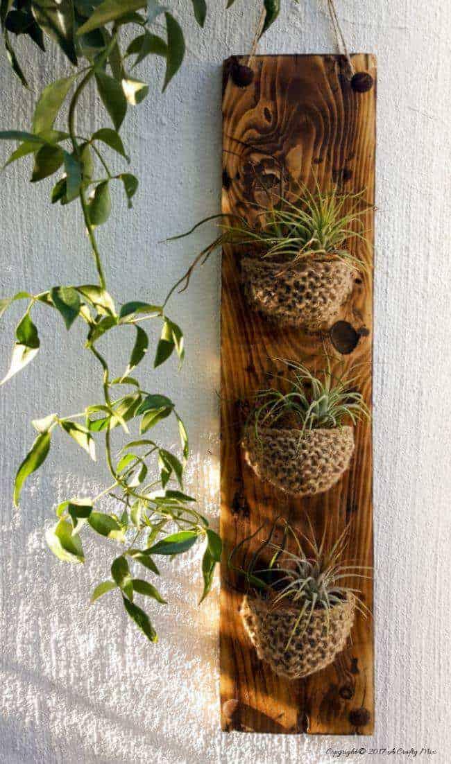 Such an interesting idea. Knitting a little planter for Tillandsias