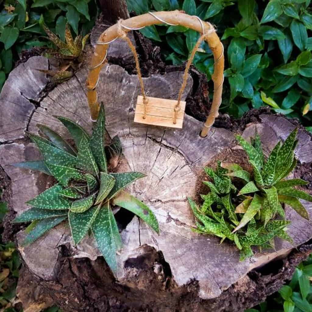 A top down view of the fairy swing on the tree stump succulent planter #treestumpplanter #DIYplanter #fairyswing #DIYTutorial #FairyGardens #SucculentPlanter #HowTo #ACraftyMix