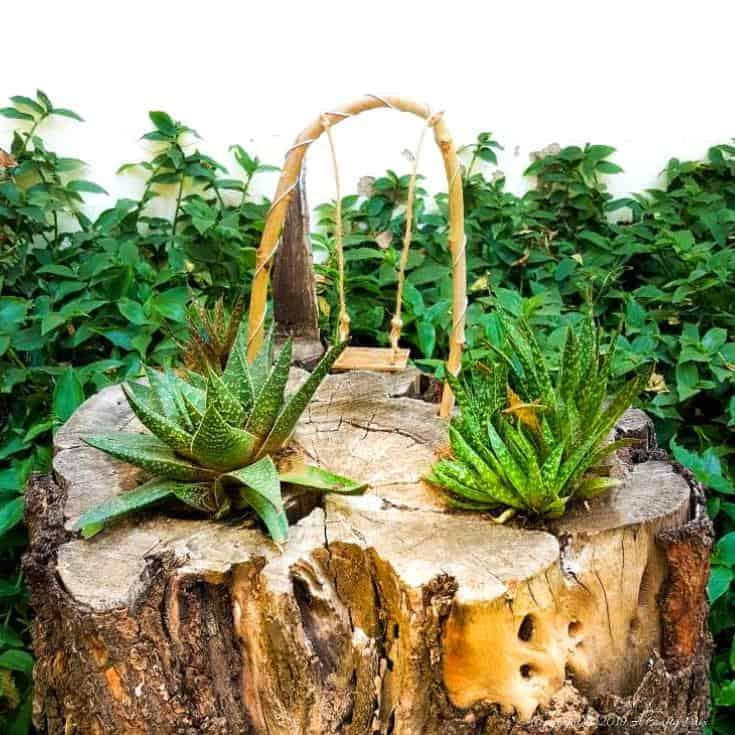 How to make a beautiful and unusual succulent tree stump planter. #treestumpplanter #DIYplanter #fairyswing #DIYTutorial #FairyGardens #SucculentPlanter #HowTo #ACraftyMix