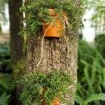 Beautiful terracotta tree planter add so much interesting to the garden. Love this easy to follow tutorial. #terracottapots #treeplanters #easycrafts #planterideas #terracottaplanters #acraftymix