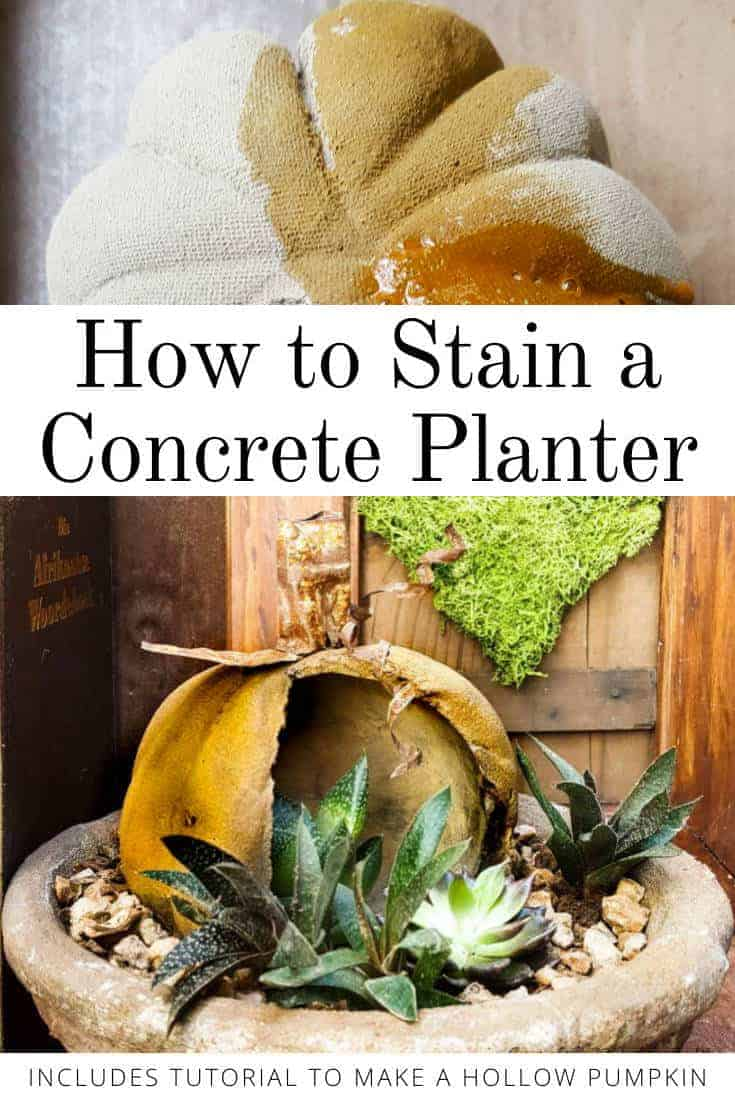 How to make a stained concrete planter #concreteplanter #concretepumpkin #stainedconcrete #concreteDIY #acraftymix #howtotutorial #succulentplanter #cementplanter