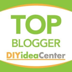 Top Blogger DIYIdeaCenter 2019