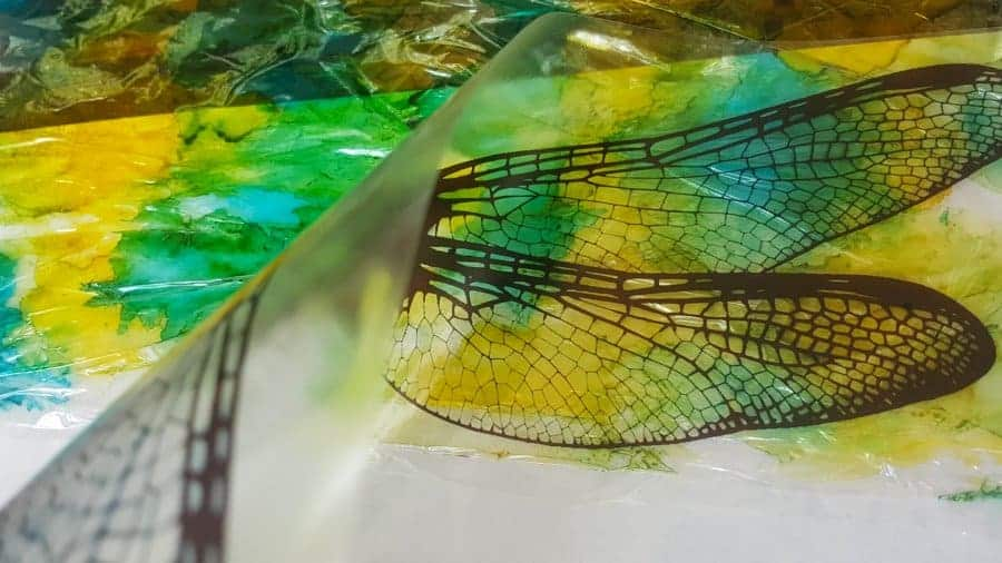 Stick the Clear film down onto the shrinkwrap #DragonflyWingsTempalte #DragonflyWingsDIY #ButterflyWings #ACraftyMix #DIYDragonfltWings #AlcoholInkCrafts #AlcoholInk #CraftTutorial