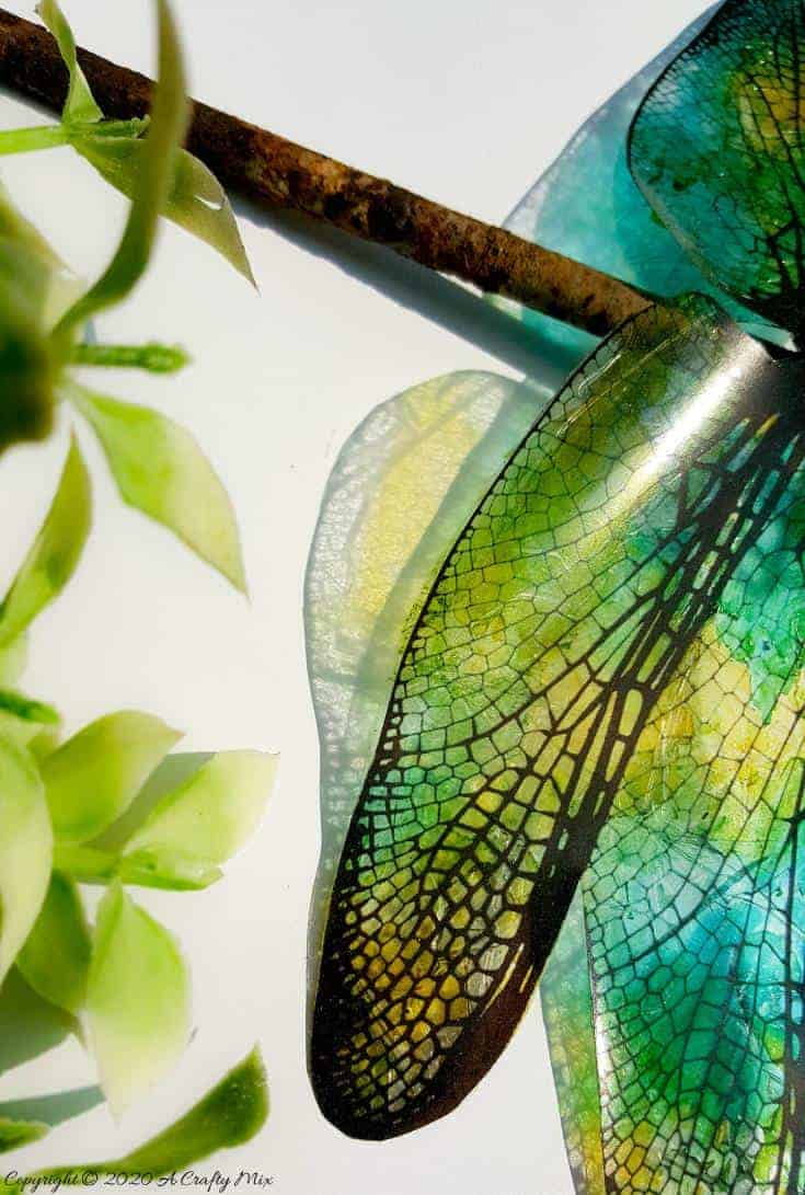A rusty nail has never looked more gorgeous with these translucent dragonfly wings. Full tutorial includes 2 free printables to make dragonfly and butterfly wings. #DragonflyWingsTempalte #DragonflyWingsDIY #ButterflyWings #ACraftyMix #DIYDragonfltWings #AlcoholInkCrafts #AlcoholInk #CraftTutorial
