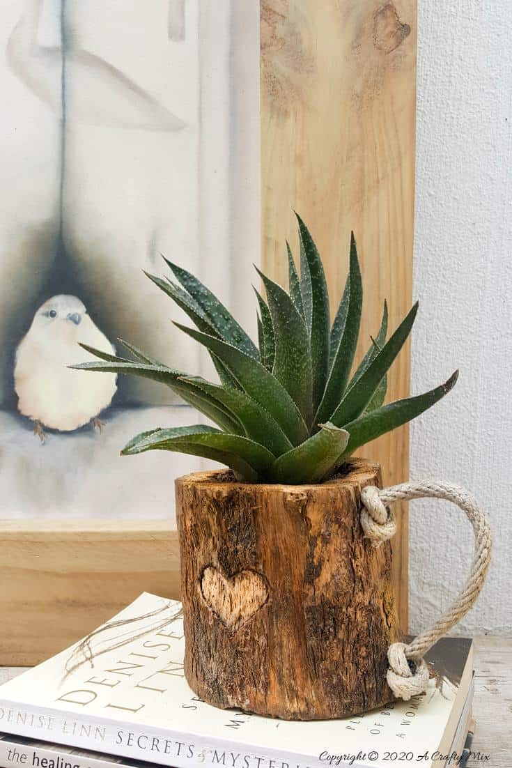 This eco-friendly branch mug planter is quick and easy to make and will add a touch of rustic elegance to your home decor. They make great gifts too #planterideas #acraftymix #ecofriendly #giftideas #branchrepurpose #branchmug