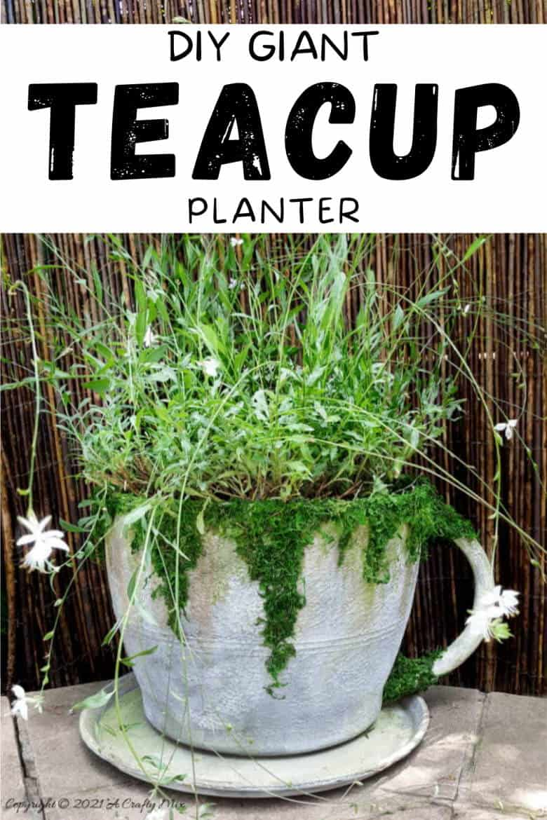Make a statement in the garden with this DIY Oversized Teacup and Saucer Planter. You can also use it as a prop at your next Alice in Wonderland tea party. #TeacupPlanter #GiantTeaCup #ACraftyMix #DIYPlanter