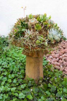 How to Make a Gorgeous Succulent Mushroom Planter