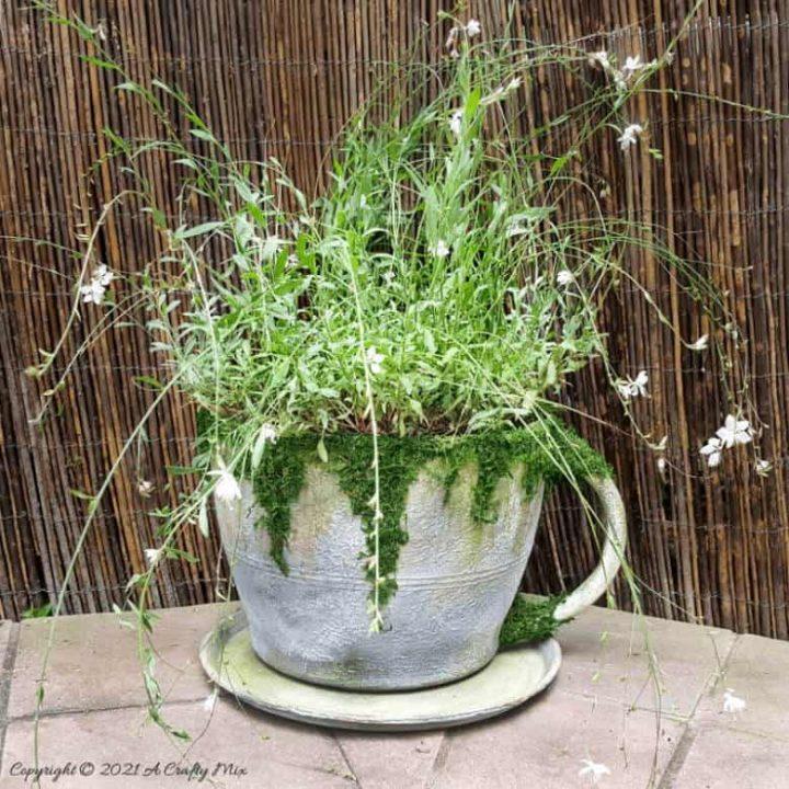Oversized Teacup and Saucer Planter – DIY