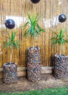 Stunning and Affordable Gabion Planters Made in a Morning