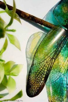 How to Make Translucent Dragonfly Wings