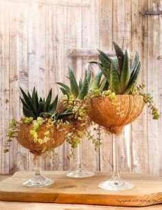 How to Turn Broken Wine Glasses Into Awesome Coconut Planters